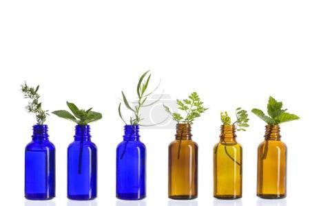 Photo pour Bouteille d'huile essentielle aux herbes et fleurs, thym, cerfeuil, estragon, menthe, anis, basilic sur fond de bois blanc  . - image libre de droit