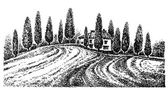 Tuscany landscape Graphic hand drawn illustration Vector graphics