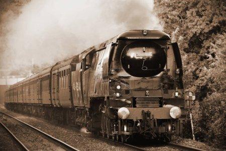 Tangmere steam train runs on tracks