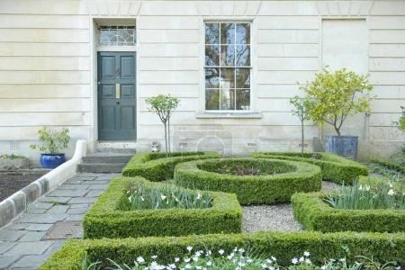 Cozy house exterior with window, beige facade, grey door and tidy bright plants and bushes