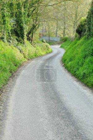 Foto de Carretera que conduce de la bobina a través del parque de la primavera - Imagen libre de derechos