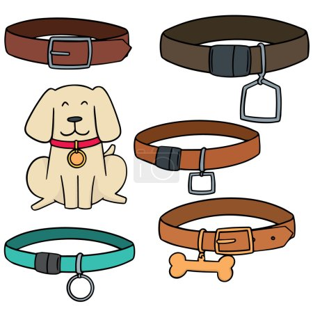 vector set of dog collar
