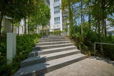 Concrete stair with green .
