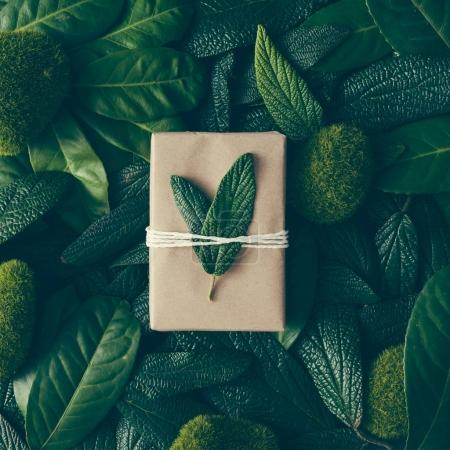 green leaves with diy gift box