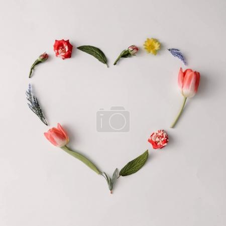 Photo for Heart shape made of colorful spring flowers and leaves. Love concept - Royalty Free Image