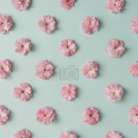 Photo for Beautiful pink flower pattern on blue pastel background. Minimal spring concept - Royalty Free Image