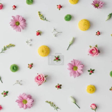 creative spring colorful flower pattern on bright background, Nature minimal concept