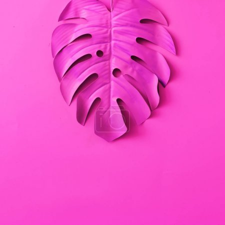Photo for Tropical and palm leaf in pink color, Concept art, Minimal surrealism - Royalty Free Image