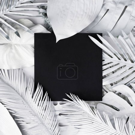 Foto de Tropical y palmeras hojas en color blanco con espacio de copia negro. Concepto de arte. Fondo mínimo del surrealismo. - Imagen libre de derechos