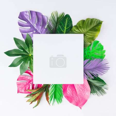 Creative layout made of colorful tropical leaves on white background. Minimal summer exotic concept with copy space. Border arrangement.