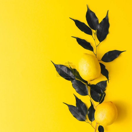 Photo for Creative summer pattern made of lemons and black leaves on yellow background. Fruit minimal concept. Flat lay. - Royalty Free Image