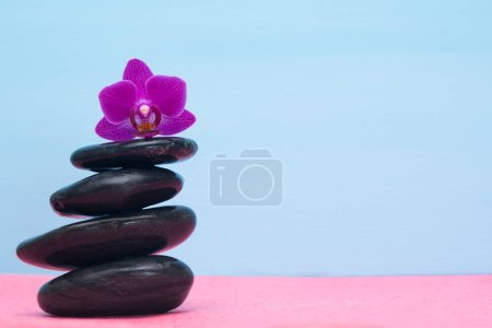 background of a pile of stones and purple orchid