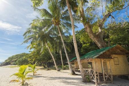 Photo for Tropical bungalow, tree and palms on the beach. - Royalty Free Image