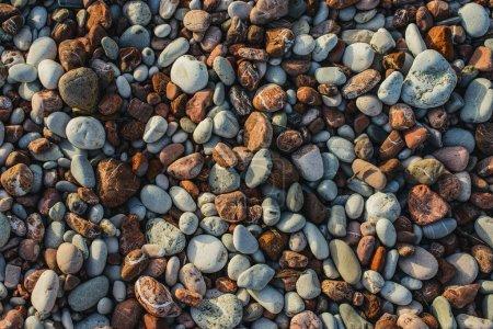 Photo pour Vue rapprochée des galets sur la plage. Texture de gravier ou toile de fond avec des pierres lisses colorées . - image libre de droit