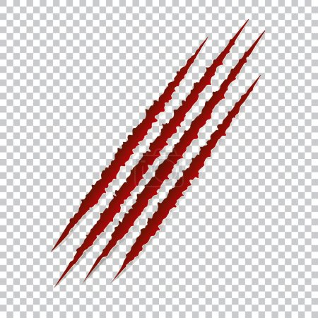 Red claws scratches - vector isolated. Talons cuts animal cat, dog, tiger, lion, bear illustration