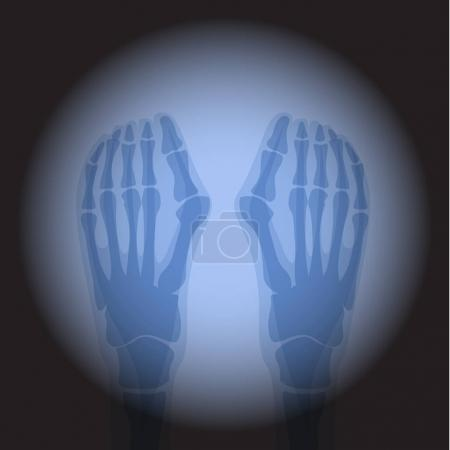 X Ray radiology.