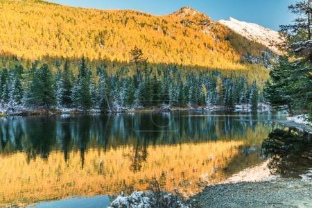 Foto de Beautiful view of lower Multinskoe Lake,Mountain Altai Republic, Siberia , Russia. - Imagen libre de derechos