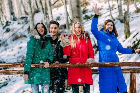 Photo pour Heureux, joyeux groupe de jeunes dans les montagnes carpates - image libre de droit
