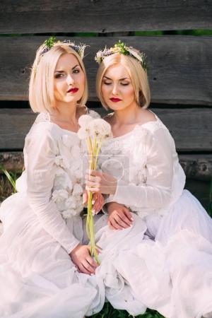 beautiful twin Sisters