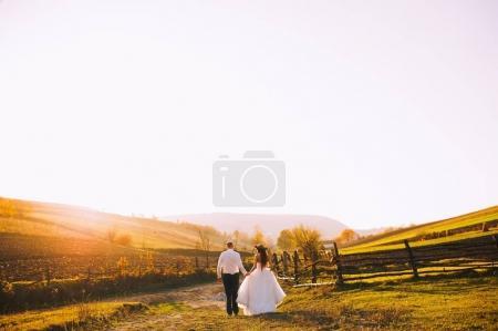Photo pour Jeune couple sur une promenade dans un champ - image libre de droit