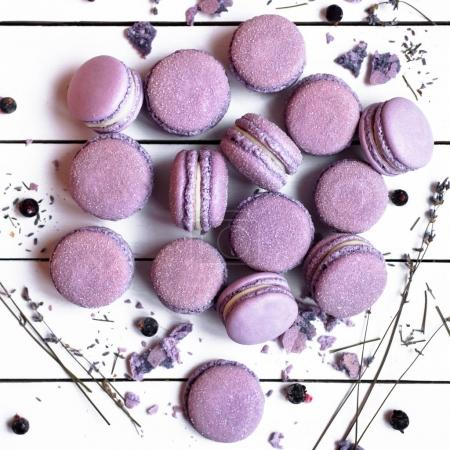 Sweet French lavender macarons