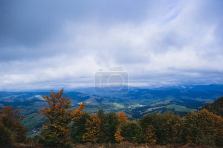 Photo for Scenic view of forest green mountain landscape - Royalty Free Image