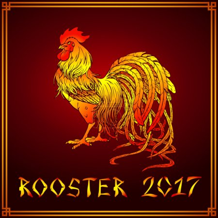 Handsome fiery rooster on red
