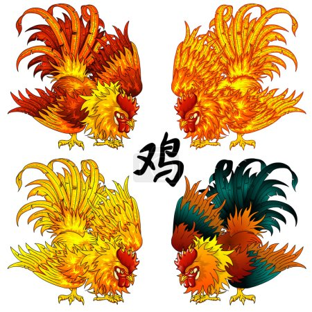 Fighting rooster four color version