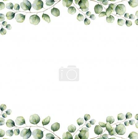 Photo pour Carte cadre floral vert aquarelle avec des feuilles d'eucalyptus en dollars argentés. Bordure peinte à la main avec branches et feuilles d'eucalyptus isolées sur fond blanc. Pour la conception ou le fond . - image libre de droit