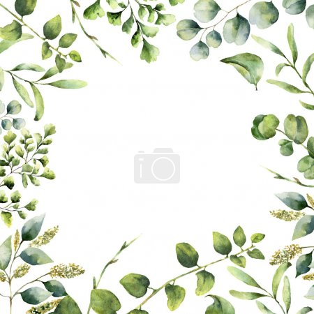 Photo for Watercolor floral frame. Hand painted plant card with eucalyptus, fern and spring greenery branches isolated on white background. Print for design or background - Royalty Free Image