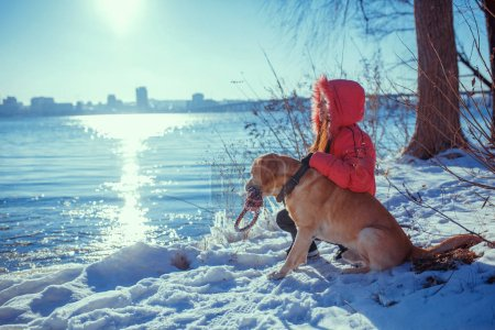 Woman with a dog Labrador  playing in winter outdoors