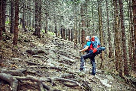 Photo pour La randonnée, le concept d'un mode de vie actif . - image libre de droit