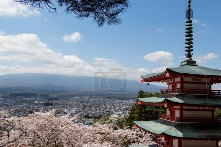 Chureito pagoda and cherry blossom as foreground and mount fuji