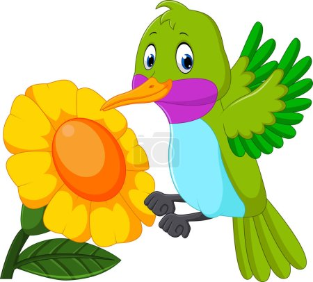 Illustration for Illustration of Cartoon funny hummingbird - Royalty Free Image