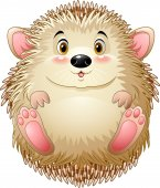 Vector illustration of Cute baby hedgehog