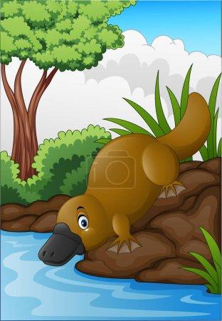 Cartoon platypus in forest creek