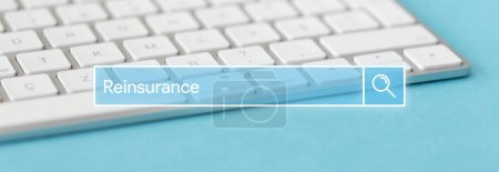 Search Engine Concept: Searching REINSURANCE word ...