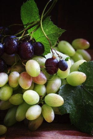 Local grapes of southern Russia and North Caucasus