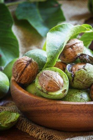 Walnuts in a green shells