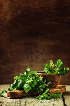 Green basil on a cutting board