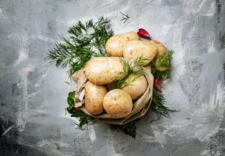 Fresh potatoes in a canvas bag