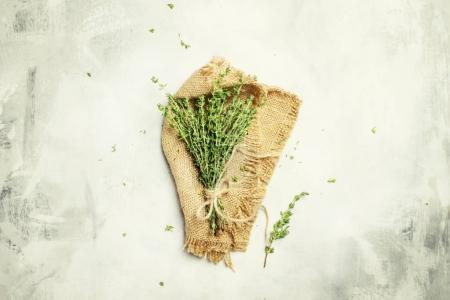 Fresh thyme in a beam, gray background