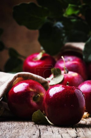 Red apples with drops