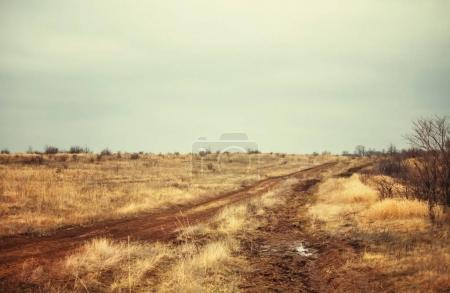 Early spring, dirt road, depressed rural landscape under a cloudy sky, selective focus