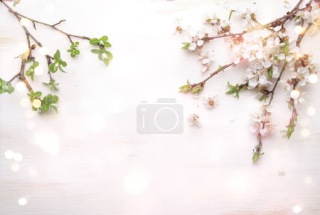Photo for Spring flowers. Apricot flowers on white wooden background. Flat lay, top view. - Royalty Free Image