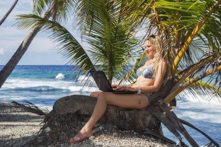 Photo pour Femme en bikini assis avec ordinateur portable sur un tre palm - image libre de droit