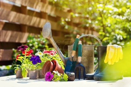 Gardening tools and flowers on the terrace in the garden. Wateri