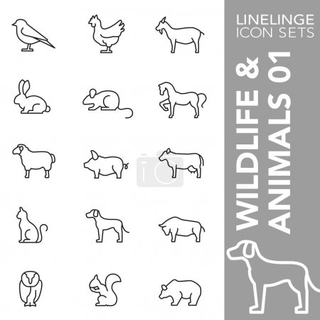 Illustration for High quality thin line icons of animal, wildlife and pets. Linelinge are the best pictogram pack unique linear design for all dimensions and devices. Stroke vector, logo, symbol and website content. - Royalty Free Image