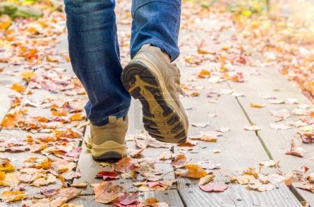 Photo pour Gros plan des jambes d'une femme portant un jean et des baskets et marchant sur une passerelle en bois recouverte de feuilles tombées à l'automne - image libre de droit