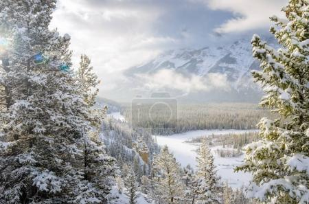 Winter View of Bow River Valley Covered in Snow